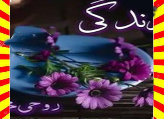 Zindagi Urdu Novel By Roohi Khan