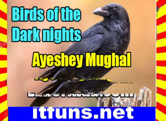 Birds Of The Dark Nights Urdu Novel By Ayeshey Mughal