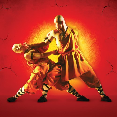shaolin 4pp battle copy (2)