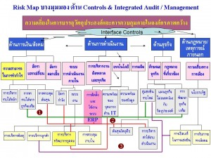 Risk Map ด้าน Control and Integrated Audit