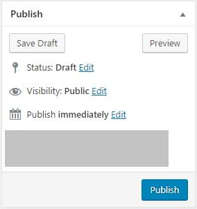 pilihan untuk publish post baru wordpress