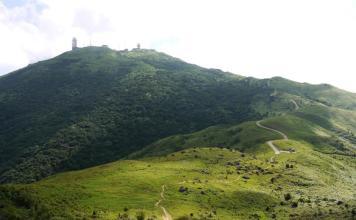 Tai Mo Shan - 大帽山