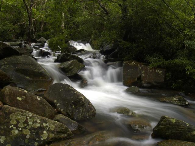 Bride's Pool Nature Trail   船灣大美督新娘潭自然教育徑