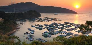 Floating Fishing Rafts at Tam Shui Wan and Shek Tsai Wan | 淡水灣和石仔灣的漁排
