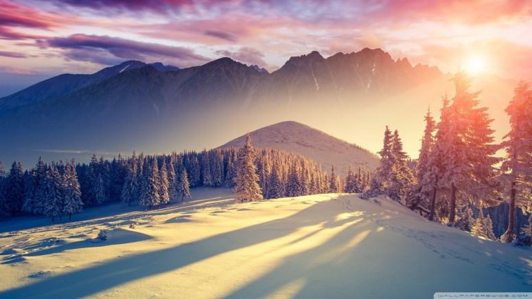 Standard - Winter Wallpaper Hd (#1822608) - HD Wallpaper & Backgrounds  Download