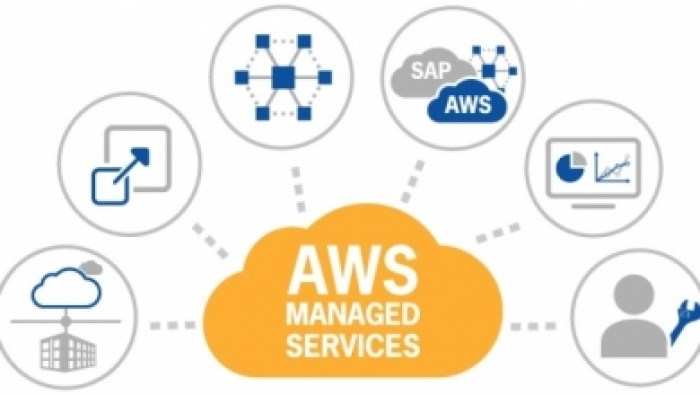 AWS Managed Services Provider