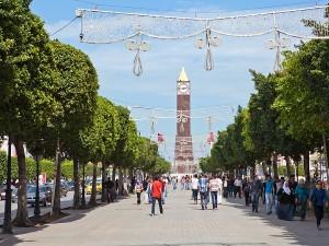 Tunis in Tunisia. (Image source: via Shutterstock.com)