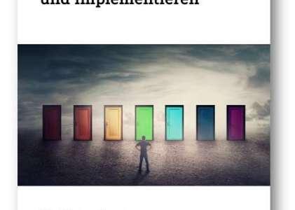 eBook: IT-Lösung auswählen und implementieren