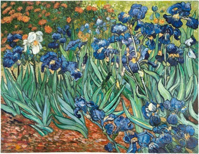 Irises in the Asylum's garden  - Vincent Van Gogh Irises
