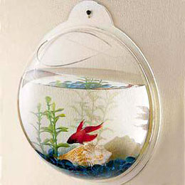 Decorative Fishbowl