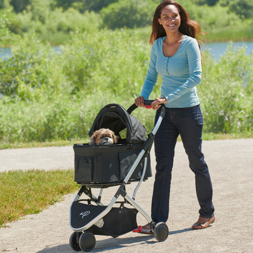Pet-Stroller-And-Carrier