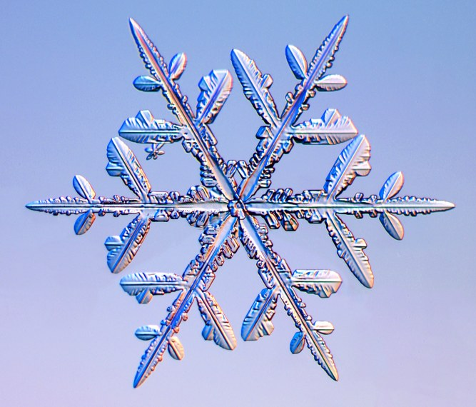 Image result for snowflake crystals