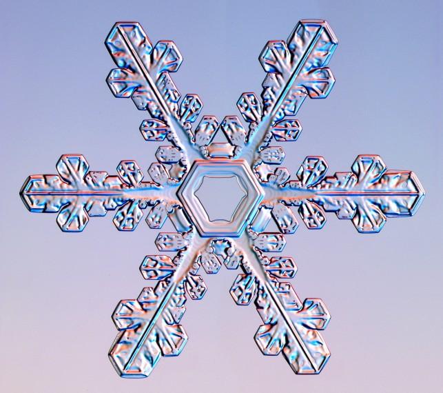 http://www.its.caltech.edu/~atomic/snowcrystals/photos3/w050121a108.jpg