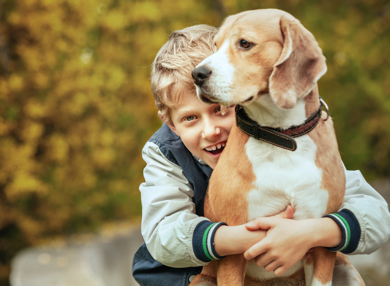 Dog-love Lovey Dovey for Your Puppy? The History and Psychology of the Human-Canine Bond