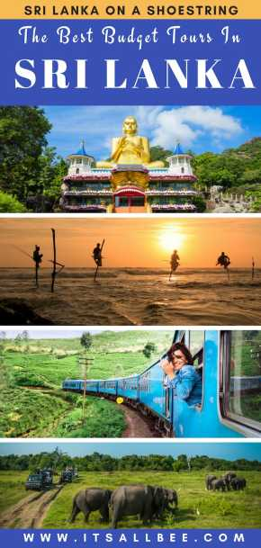 The Best Budget Tours In Sri Lanka | yala national park, nuwara eliya, arugam bay, sigiriya and sri lanka tour packages prices