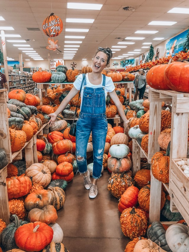 Best Trader Joes Products Fall Haul