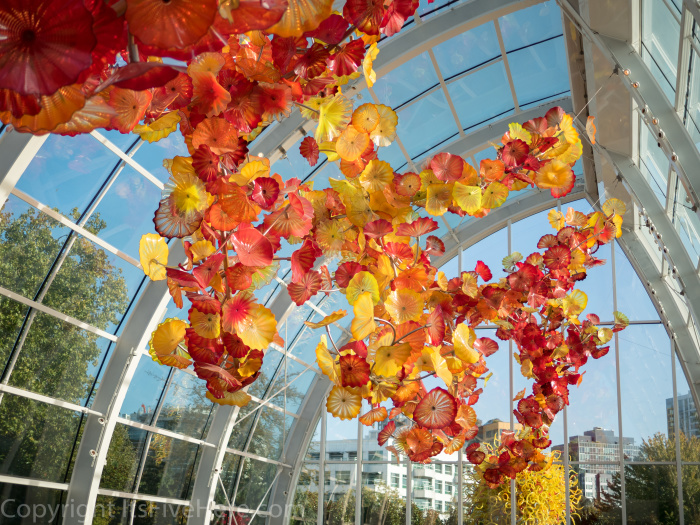 photo essay chihuly garden and glass in seattle - Chihuly Garden And Glass Seattle