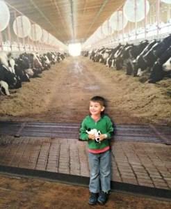 Fair Oaks Farm 2015