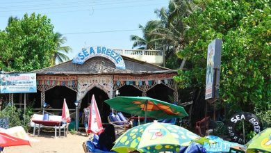 Photo of SEA BREEZE BAR & RESTAURANT