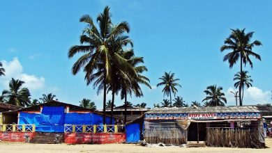 Photo of Grim reality of the Goa tourism
