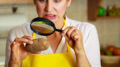 Photo of 'FDA Kitchen Nightmares' 15 restaurants raided 10 sealed in Calangute