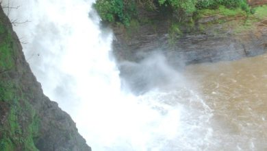 Photo of Drowning at Arvalem Waterfall Claims Life of Afghani National