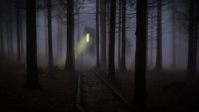 Photo of 5 of The Most Haunted Places In Goa That Will Freak You Out