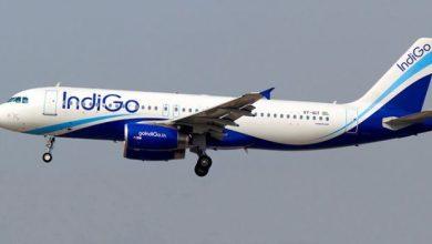 Photo of Indigo ground-staff assaulted passenger on tarmac at Delhi airport