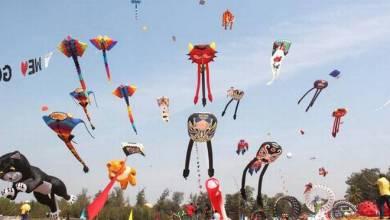 Photo of The Goa International Kite Festival makes the skies come alive