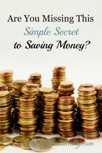 Saving money is hard work and requires some serious sacrifice. Find out the number one secret to get you on track to finally achieving the savings you desire.