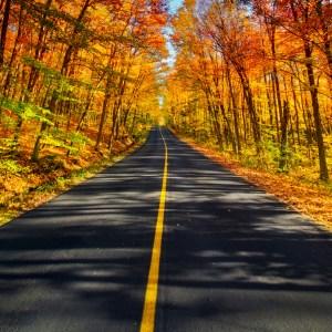 fall-foliage-road-trip