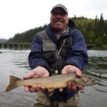 Bull trout in BC, Canada on natural color salmon egg