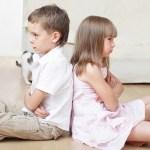 Medierea conflictelor de la scoala