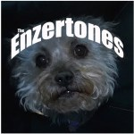The Enzertones