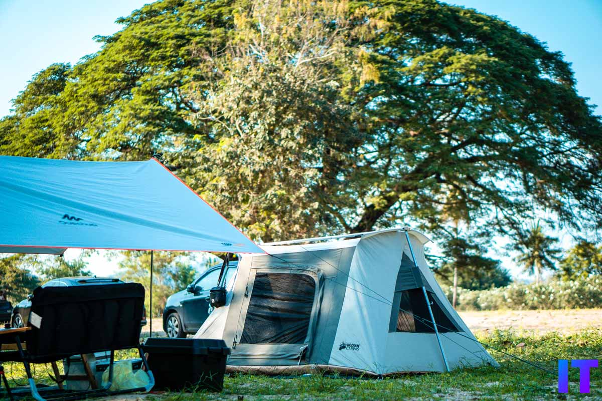 The Tree Campground