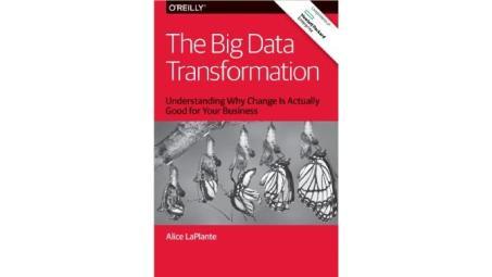 WP_Transformacion Big Data_2