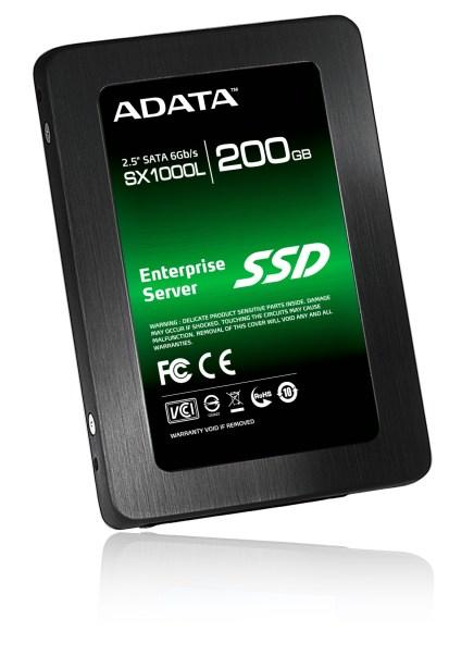 SX1000L_200GB_45GREEN