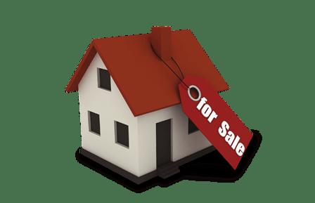 House For Sal Figures