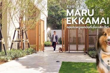 """MARU EKKAMAI 2 รีวิวคอนโดสุดหรู High-Rise แห่งเดียวใน """"เอกมัย"""" ที่สัตว์เลี้ยงพักได้ 10 - Luxury Townhome"""