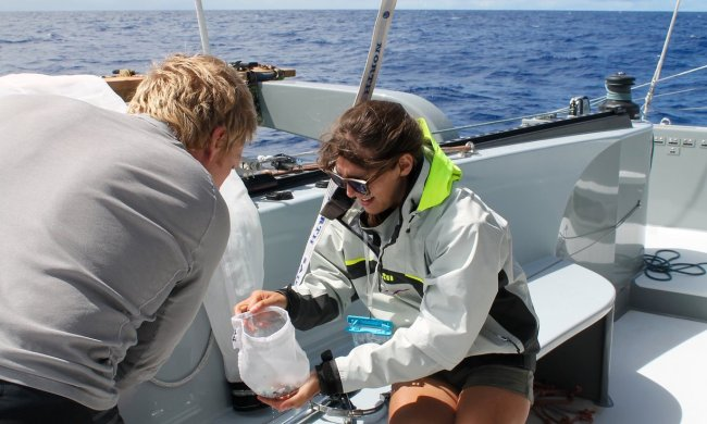 อาสาสมัครกำลังเก็บตัวอย่างของขยะที่ได้มาเพื่อทำการทดสอบต่อไป | Photograph: The Ocean Cleanup