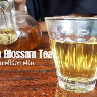 Coffee Blossom tea ชาดอกกาแฟมากประโยชน์ ไร้แทนนินและคาเฟอีน 14 - blossom