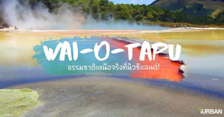 อุทยานความร้อนใต้พิภพ Wai-O-Tapu  หนึ่งในสถานที่อัศจรรย์ เหนือจริง ของโลก 13 - Wai-O-Tapu