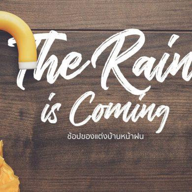 ของแต่งบ้านรับหน้าฝนแบบ Perfect Lifestyle พร้อมโค้ดลดราคาที่ HomePro.co.th 31 - decorate