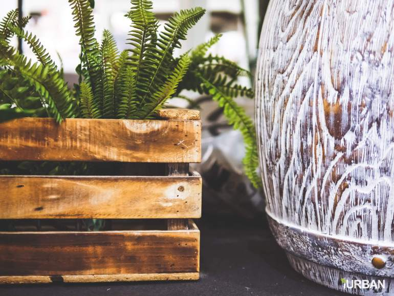 8 วิธีตกแต่งบ้านให้ดูธรรมชาติแบบ Organic Living 24 - decor