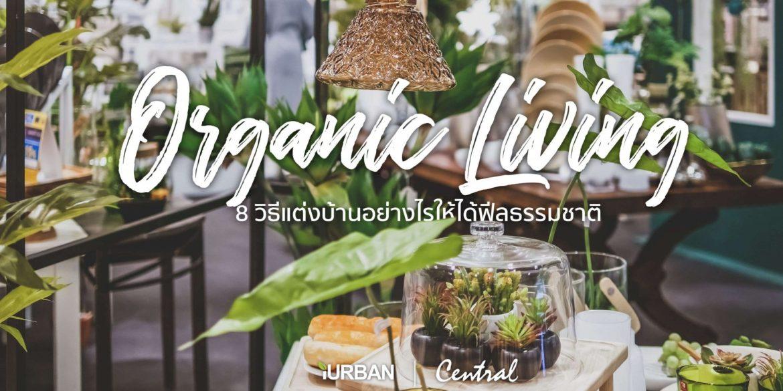 8 วิธีตกแต่งบ้านให้ดูธรรมชาติแบบ Organic Living 13 - decor