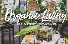 8 วิธีตกแต่งบ้านให้ดูธรรมชาติแบบ Organic Living 20 - Video