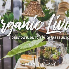 8 วิธีตกแต่งบ้านให้ดูธรรมชาติแบบ Organic Living 38 - decor