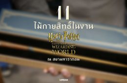 11 ไม้กายสิทธิ์ แฮร์รี่ พอตเตอร์ ราคา ที่งาน สยามพารากอน #HarryPotterThailand  Harry Potter Paragon 10 - Video