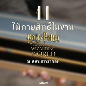 11 ไม้กายสิทธิ์ แฮร์รี่ พอตเตอร์ ราคา ที่งาน สยามพารากอน #HarryPotterThailand  Harry Potter Paragon 16 - Fantastic Beasts