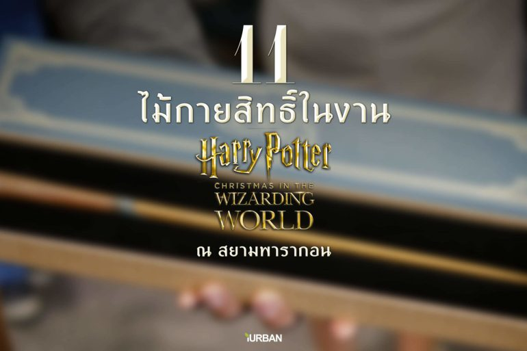 11 ไม้กายสิทธิ์ แฮร์รี่ พอตเตอร์ ราคา ที่งาน สยามพารากอน #HarryPotterThailand  Harry Potter Paragon 19 - TRAVEL